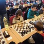šach třemešná 2017 11