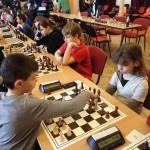 šach třemešná 2017 13