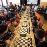 šach třemešná 2017 4
