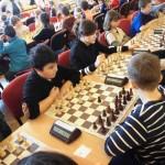 šach třemešná 2017 5