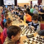 šach třemešná 2017 6