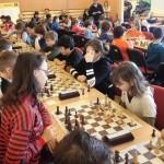 šach třemešná 2017 8